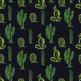Cactus seamless pattern Black background Royalty Free Stock Images