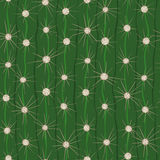 Cactus seamless pattern. Royalty Free Stock Photography