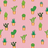 Cactus seamless pattern. Hand drawn seamless pattern with cactuses Royalty Free Stock Images