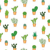 Cactus seamless pattern. Hand drawn seamless pattern with cactuses Stock Photo