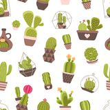 Cactus Seamless Pattern Stock Photo