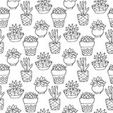 Cactus seamless pattern illustration. Vector succulent and cacti hand drawn set. In door plants in pots. Stock Photography