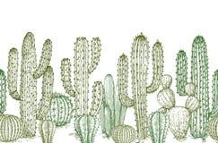 Free Cactus Seamless Pattern. Sketch Desert Cactuses Plants Endless Border For Western Landscape Vector Illustration Stock Images - 140960244