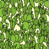 Cactus seamless pattern Stock Images