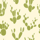 Cactus seamless pattern Stock Photo