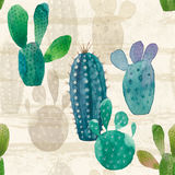 Cactus seamless pattern. Watercolor hand drawn background. Stock Images