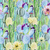 Cactus seamless patterns Royalty Free Stock Photo