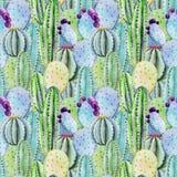 Cactus seamless patterns Royalty Free Stock Image