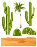 Cactus set Stock Photo