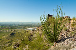 Piestewa / Squaw Peak Stock Photography