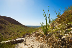 Piestewa / Squaw Peak Royalty Free Stock Photo