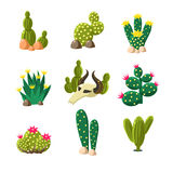 Cactus and Skull Icons, Vector Illustration Set Royalty Free Stock Image