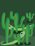 Cactus snake Stock Images