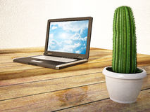 Cactus stands near a laptop Stock Photography