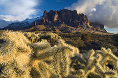 Cactus Storm. The Superstition Mountains outside Phoenix, Arizona, create a winter storm backdrop for the harsh desert cactus below Royalty Free Stock Images
