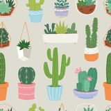 Cactus and succulent flower green home plant seamless pattern floral illustration. Stock Images