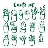 Cactus and succulent hand drawn set. Geometric flowers in pots. Vector colorful cute house interior plants Stock Image