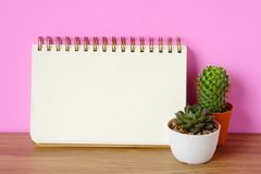 Cactus, succulent plants and blank notebook paper on wooden table and pink background, desert houseplant trendy design background. Concept stock image