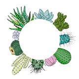 Cactus succulente messo in artboard del cerchio Posto per testo agave, aloe, gastraea, echeveria, Pachyphytum, fico d'India Fotografie Stock Libere da Diritti