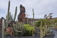 Jardin de cactus landscape stock image