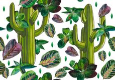 Cactus, succulents and leaves of Maranta. A seamless pattern made in watercolors. A tropical set that takes you to hot countries, giving a summer mood. Colors Stock Photos