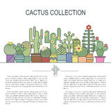 Cactus and succulents vector line icon set. Exotic floral garden silhouettes. Nature cacti retro colors design Royalty Free Stock Photo