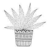 Cactus, suculento Ejemplo blanco y negro para los libros de colorear, páginas stock de ilustración