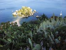 Cactus sur la plage de colline chez Isola Bella, Taormina, Sicile l'Italie photos stock