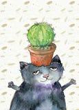 Cactus sur le chat Images libres de droits