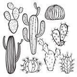 Cactus sur le fond blanc Vecteur, défectuosité tirée par la main d'ensemble Images stock