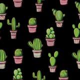 Cactus sur un fond noir Photos stock
