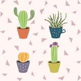Cactus sveglio del fumetto nel vaso Fiore succulente nella tazza I cactus disegnati a mano svegli si dirigono la raccolta della p Fotografia Stock