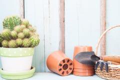 Cactus in terraglie con gli strumenti di giardino, il concep di stile di vita e del giardino Fotografia Stock Libera da Diritti
