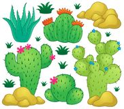 Cactus theme image 1 Stock Images