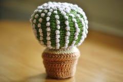 Cactus tricottato fatto a mano Fotografia Stock Libera da Diritti