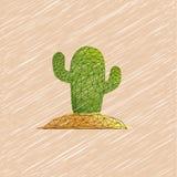 Cactus, usine de désert, usine épineuse, épineux, épineuse Mexica d'usine Photographie stock libre de droits