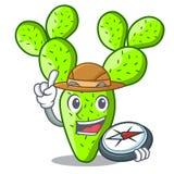 Cactus van de ontdekkingsreiziger de mooie vijgencactus in de tuin stock illustratie