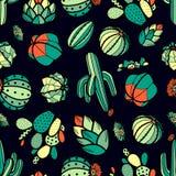 Cactus variopinto e succulenti rossi e verdi nel profilo nero Immagine Stock Libera da Diritti