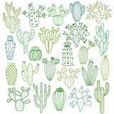 Cactus vectorillustraties Hand getrokken geplaatste cactusinstallaties vector illustratie