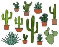 Cactus vectorreeks, hand getrokken inzameling van diverse succulents en cactussen Stock Afbeelding