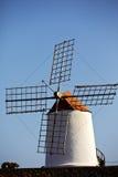Cactus windmills  isle of lanzarote africa Stock Photography