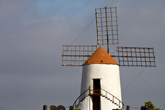 Cactus windmills in  isle   lanzarote africa Royalty Free Stock Photo