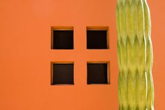 Cactus Window. A Cactus near a window on an orange wall Royalty Free Stock Photography
