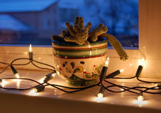 Cactus in the window with Christmas lights Royalty Free Stock Photo