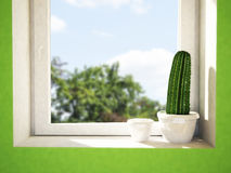 Cactus on the windowsill Royalty Free Stock Image