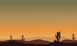 Cactus in woestijnsilhouet Stock Foto's