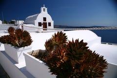 Cactus y capilla en la isla de Santorini Fotografía de archivo libre de regalías