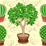 Cactus y Crassula en potes en un fondo verde Un modelo de lujo Conveniente como papel pintado encendido, como fondo para el envol stock de ilustración