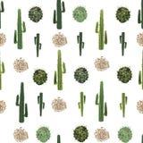 Cactus y modelo inconsútil de la planta rodadora Fotografía de archivo libre de regalías