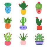 Cactus y plantas suculentas en potes Sistema del ejemplo de cactus dibujados mano y de succulents que crecen en pequeños potes li Imagenes de archivo